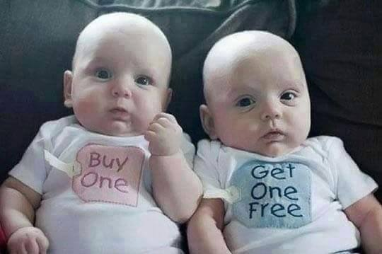 onefree