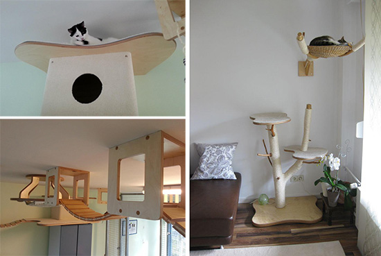 ceiling without cats