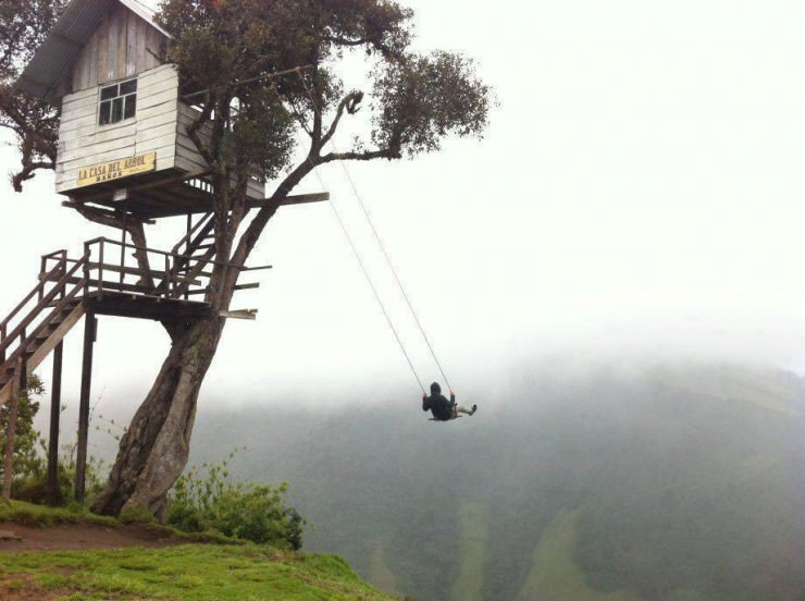 tree house with swing
