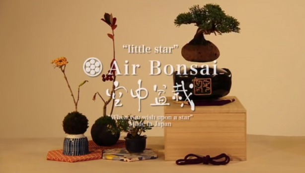 Air Bonsai01